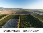 aerial view of citrus orchards... | Shutterstock . vector #1063149824