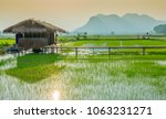 view of resting place for... | Shutterstock . vector #1063231271