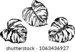 vector set of illustraton.... | Shutterstock .eps vector #1063436927