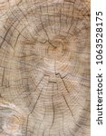 Small photo of Cut through tree section with rings and cracks portrait for background