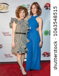 Small photo of Wendy Litner, Meghan Heffern attend 9th Annual Indie Series Awards at The Colony Theatre, Burbank, CA on April 5th, 2018