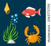 set aquatic funny sea animals...   Shutterstock .eps vector #1063772705