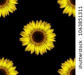 sunflower   high quality hand... | Shutterstock . vector #1063851311