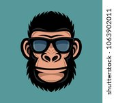 monkey with sunglasses. cool... | Shutterstock .eps vector #1063902011