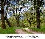 spring road | Shutterstock . vector #1064026