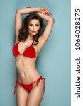 sexy brunette woman wear pastel ... | Shutterstock . vector #1064028275