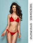 sexy brunette woman wear pastel ... | Shutterstock . vector #1064028281