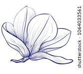 magnolia flowers drawing and... | Shutterstock .eps vector #1064033561