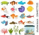 aquarium flora and fauna color...   Shutterstock .eps vector #1064077535