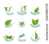 set of nature leaf   droplet... | Shutterstock .eps vector #1064080739
