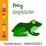frog. amphibian. animals for... | Shutterstock .eps vector #1064115521