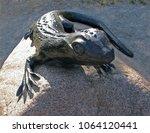 gomel belarus   06.18.2008.... | Shutterstock . vector #1064120441