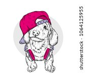 Stock vector funny puppy with cap and headphones purebred puppy vector illustration 1064125955