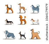 different dog breeds on white... | Shutterstock .eps vector #1064179979