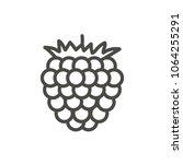 raspberry icon vector. outline...
