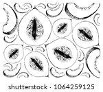 exotic fruit  illustration... | Shutterstock .eps vector #1064259125
