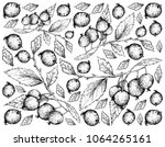 berry fruits  illustration... | Shutterstock .eps vector #1064265161