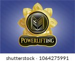 shiny badge with book icon and ... | Shutterstock .eps vector #1064275991