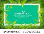 green tea leaves vector nature... | Shutterstock .eps vector #1064280161