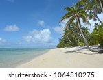 landscape view of coconut trees ... | Shutterstock . vector #1064310275