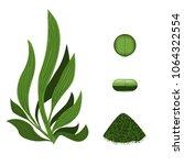 spirulina algae pills ... | Shutterstock .eps vector #1064322554