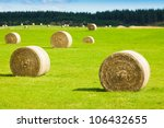 round bay bale rolls in a green ...