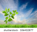 green grass and leaves in the... | Shutterstock . vector #106432877