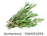isolated rosemary herb. fresh... | Shutterstock . vector #1064351054