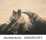 shadow of palm leaves on... | Shutterstock . vector #1064351291