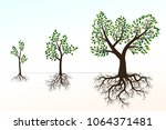 green trees with roots ... | Shutterstock .eps vector #1064371481