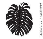 monstera leaf  black silhouette ... | Shutterstock .eps vector #1064378249