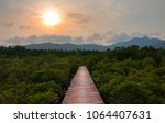 the old wooden walkway between... | Shutterstock . vector #1064407631