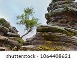 Lone Tree Between Rock...