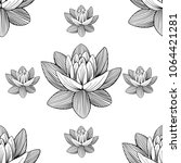 lotus lily water flower... | Shutterstock .eps vector #1064421281