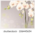 greeting card with orchid.... | Shutterstock .eps vector #106445654