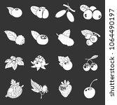 Berries Icons Set Vector White...