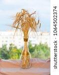bouquet of wheat ears on the... | Shutterstock . vector #1064502374
