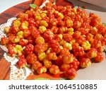 many ripe cloudberries close... | Shutterstock . vector #1064510885