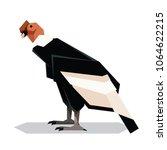 flat polygonal andean condor | Shutterstock .eps vector #1064622215