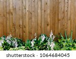 wooden fence with plants... | Shutterstock . vector #1064684045