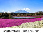 mount fuji and pink moss or... | Shutterstock . vector #1064733704