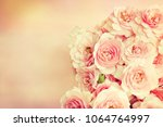 beautiful roses background | Shutterstock . vector #1064764997