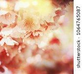 spring flowers. sakura | Shutterstock . vector #1064765087