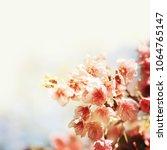 spring flowers. sakura | Shutterstock . vector #1064765147