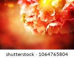 spring flowers. sakura | Shutterstock . vector #1064765804