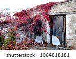 abandoned house in the... | Shutterstock . vector #1064818181