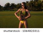 beautiful  elegant girl  model... | Shutterstock . vector #1064823311