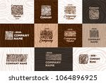 wood and timber texture symbol...   Shutterstock .eps vector #1064896925