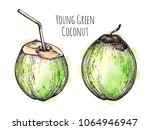 young green coconuts. retro... | Shutterstock .eps vector #1064946947