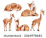 Stock photo cute watercolor little deer baby watercolor bembi cartoon baby nursery deer set baby animal set 1064978681